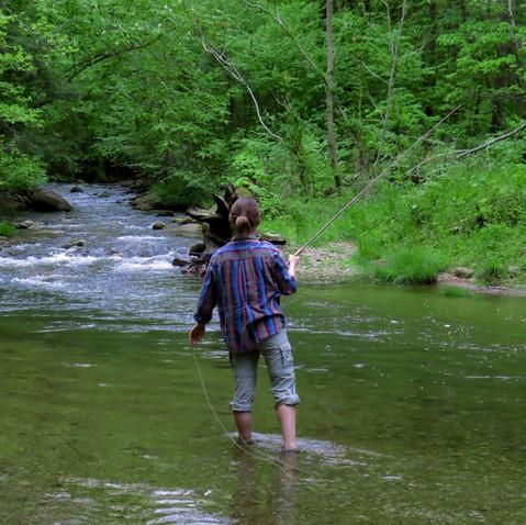 Hobbies in Nature