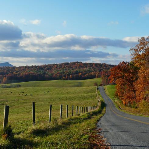 Winding Senic Roads
