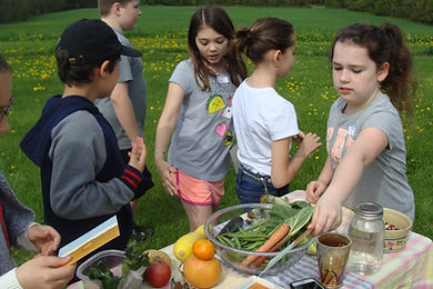 students tasting vegetables, school to farm day