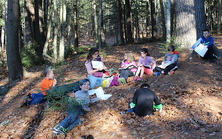students journaling in the forest