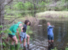 students in a pond collecting water quality data