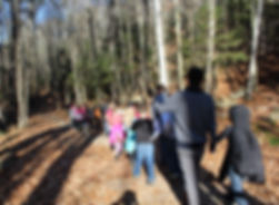 group of students walking in the woods in fall