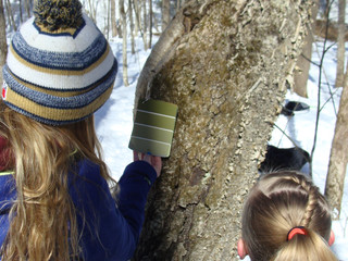 Winter Play & Learning
