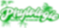 phytologie-rooted-logo.png