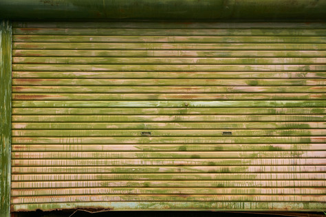 Bambo green