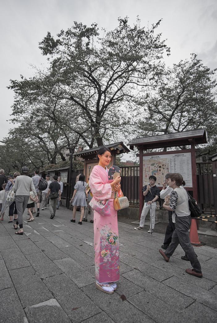 Tourist Geisha