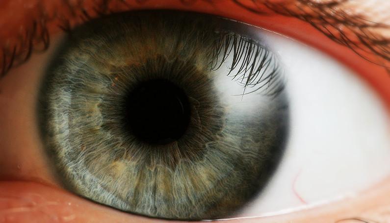 Human eye upclose