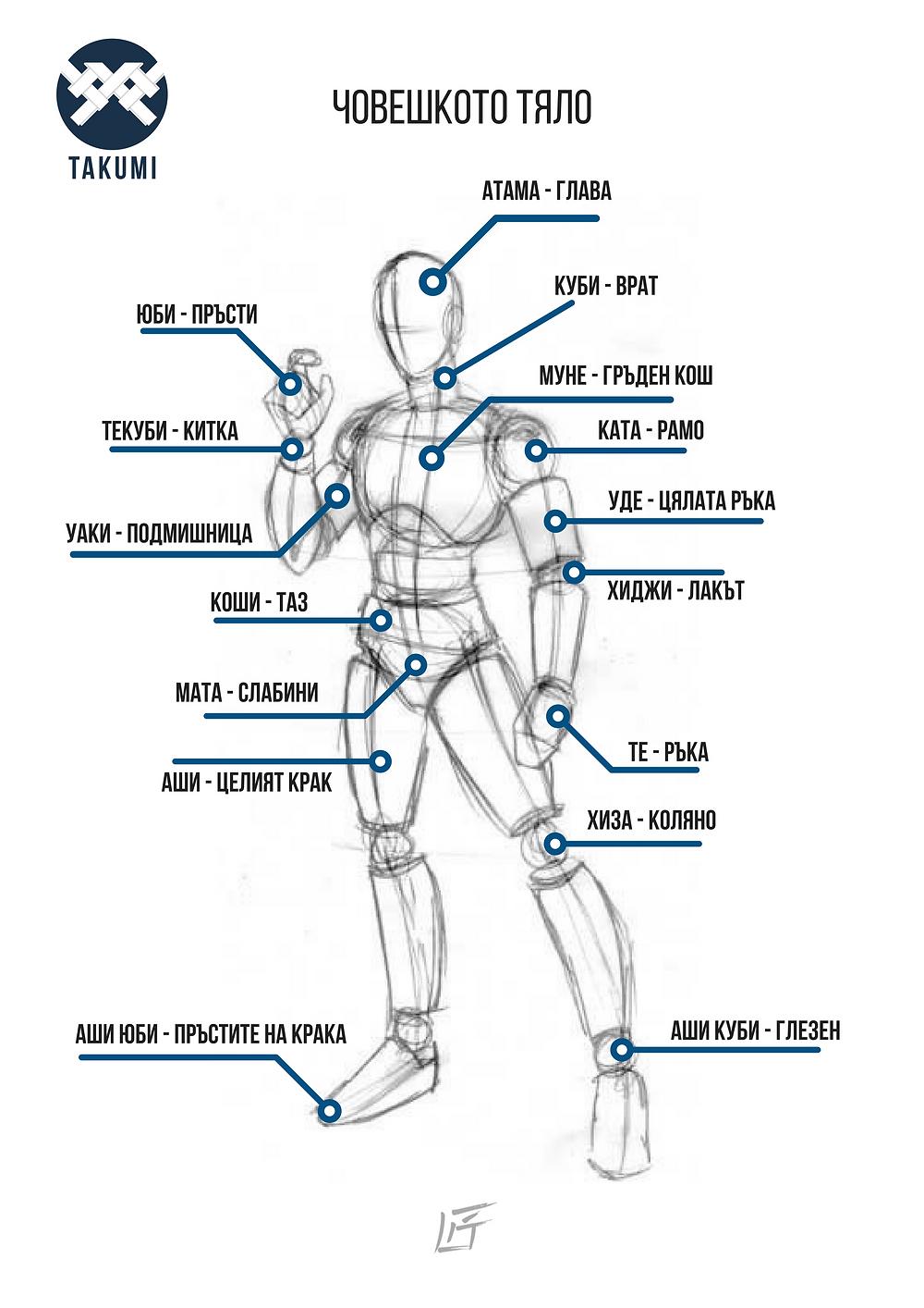 Айкидо клбу такуми - човешкото тяло на японски
