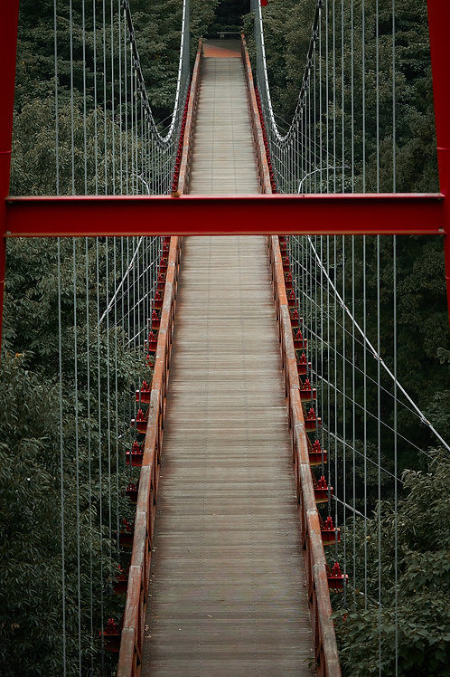 Bridge Lines - Red series Japan