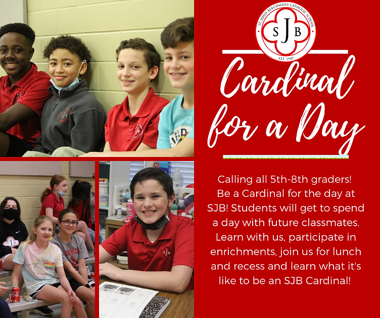 Cardinal for a day 21.png