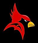 Copy of Cardinal_MEDIUM_shadow.png