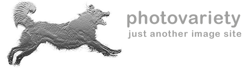 photovariety-Logo3B.png