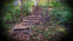 TrailStairsInFall.jpg