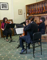 string quartet at Stammel String Fundrai