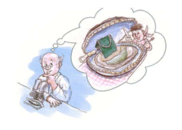 dessin huître