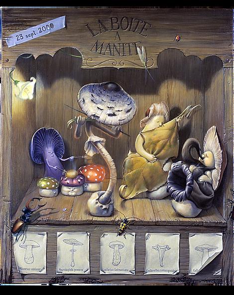Illustration champignons, Luc Favreau