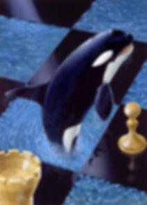 dessin orque
