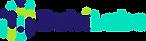 Logo ZubiLabs.png