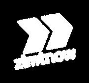zimtnow_logo_neg_2021.png