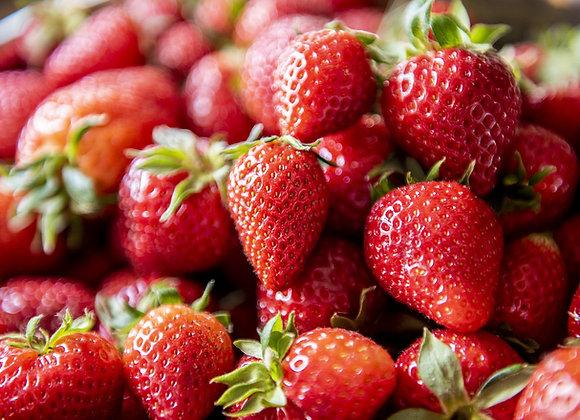 Strawberry Fields (Sweet) 4% ABV