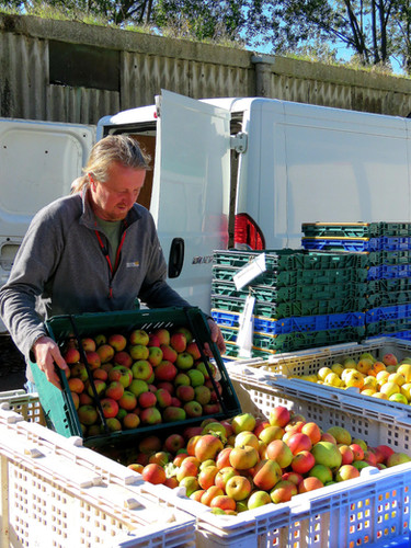 Customer apples