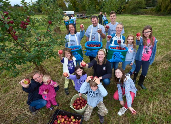 Community Orchard pick