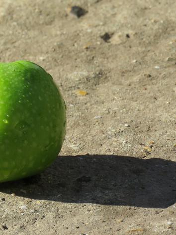 Apple on the concrete