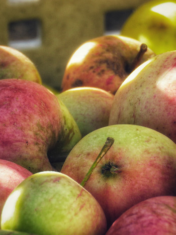 Mixed apple varieties