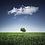 Thumbnail: Cloud 9 (Medium/Sweet) 5.4% ABV
