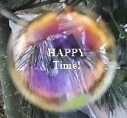 seifenblase-happy-mit text.jpg