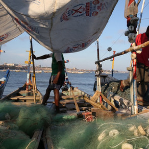 Fishermen: common folk or common criminals?