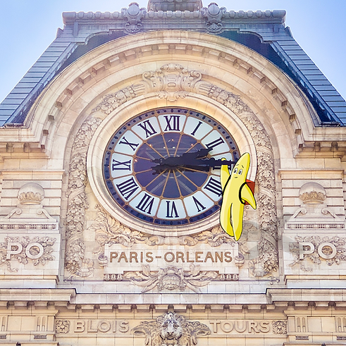 Theo star in Paris.PNG