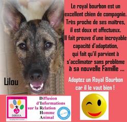 Le Royal Bourbon