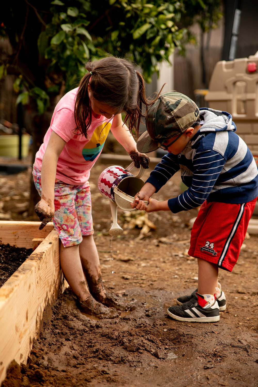watering the mud