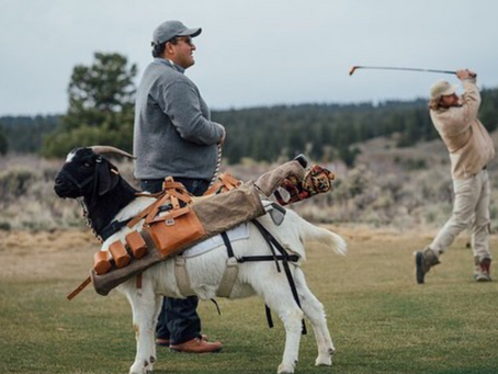 The Par Train Podcast Episode #42: Seamus Golf – Authenticity is Everything