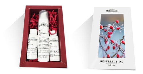 Gift Box Resurrection. Xmas Edition.