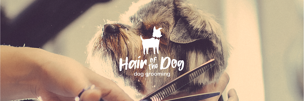 Hair of the Dog - Brand-01.png