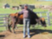 Young Mongolian herder