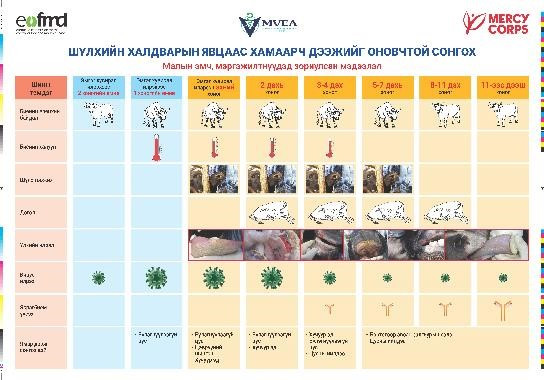 Job aid on clinical signs, virus and antibody presence over time. Courtesy of Mercy Corps for translation and dissemination