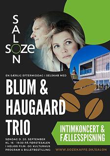 SOZE SALON Blum & Haugaard Trio.jpg