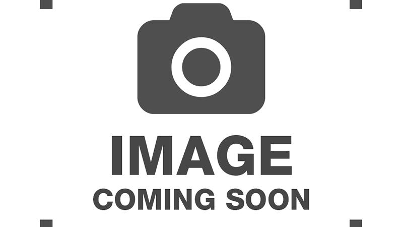 Organic Skullcap (Scutellaria lateriflora)