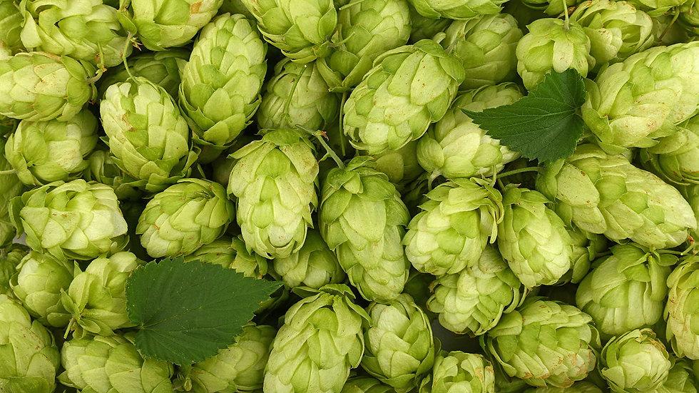 Organic Hops Capsules