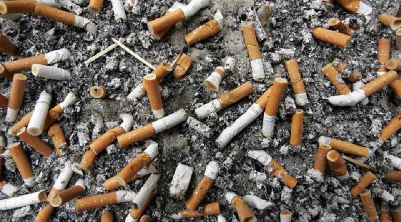 cigarette butts used in bricks