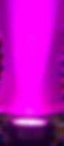 uplightpurple.png