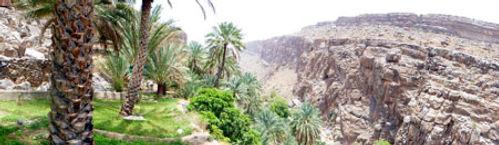 Arab Region.jpg