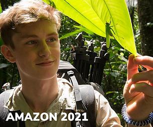 Amazon2021.png