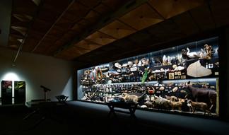 Museum Ausstellungsbau Frankfurt