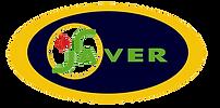 Logo Saver.png
