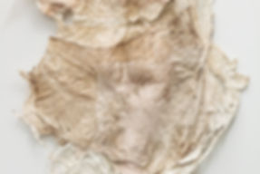 Sammy Lee, joomchi, hanji, korean art, denver artist, contemporary paper art, kozo, paper felting