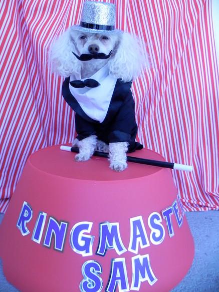 Ring Master Sam